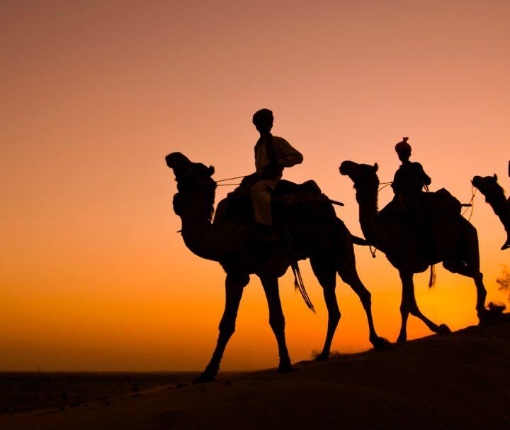 royal rajasthan tour india